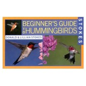 Beginner's Guide to Hummingbirds