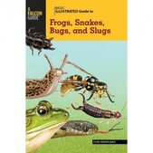 Falcon Guides - Frogs, Snakes, Bugs and Slugs