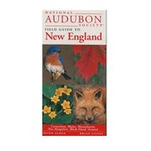 Field Guide To New England