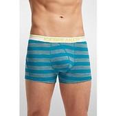 Icebreaker Mens Anatomica Boxers Stripe - New