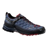 Men's Firetail EVO GTX Shoes