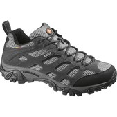 Moab Waterproof Shoe (Men's)
