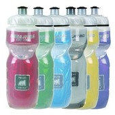 Polar Insulated 20oz. Water Bottle