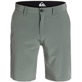 "Quiksilver Everyday Solid 21"" Amphibian Shorts for Men"