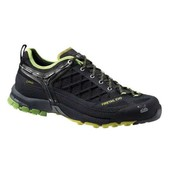 Salewa Firetail EVO GTX Shoes - Mens