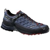 Salewa Firetail GTX Shoes