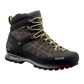 Salewa Mountain Trainer Mid GTX Shoe