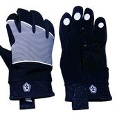 Sessions Candy Glove - Womens