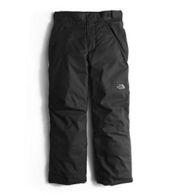 THE NORTH FACE Boys' Freedom Insulated Pants