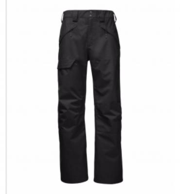 The North Face Men's Seymore Pant